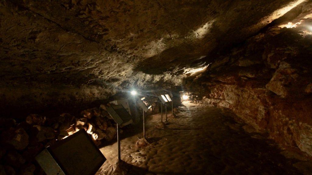 caverne gravures